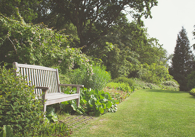 A nice landscape with a bench.