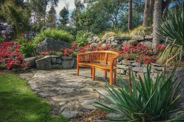 Bench in a serene landscaping setting.